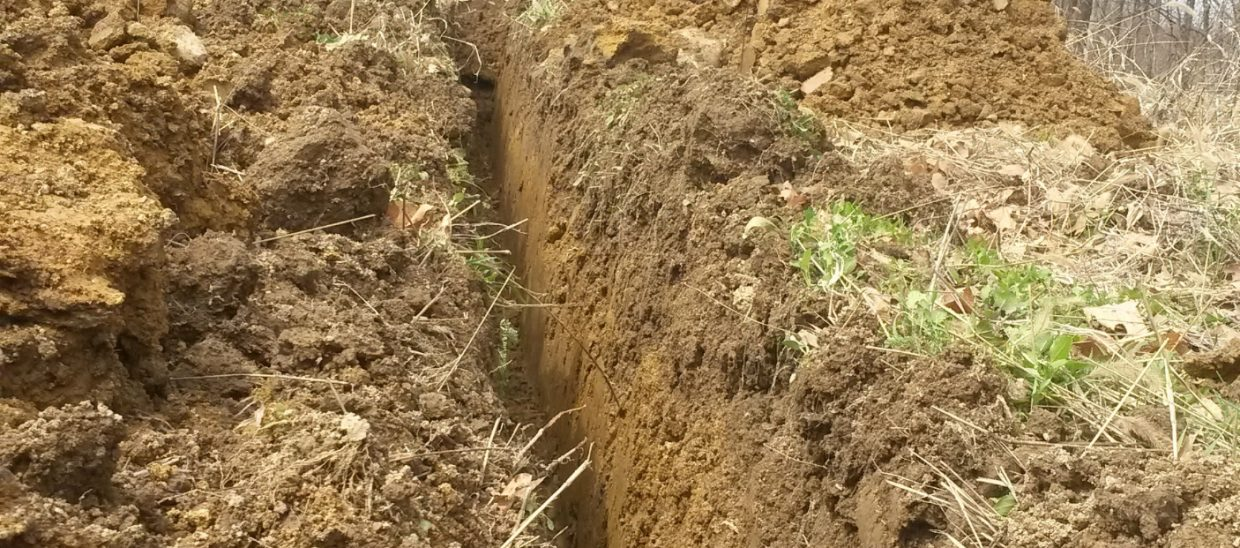 Excessive rain always causes smaller, weaker plants in areas where the water can't drain. Therefore, the first step of preparing the soil is to dig trenches and lay tile so that these areas can drain.